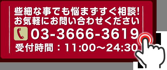 電話 03-3666-3619